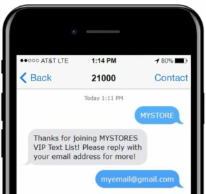 text message and email marketing